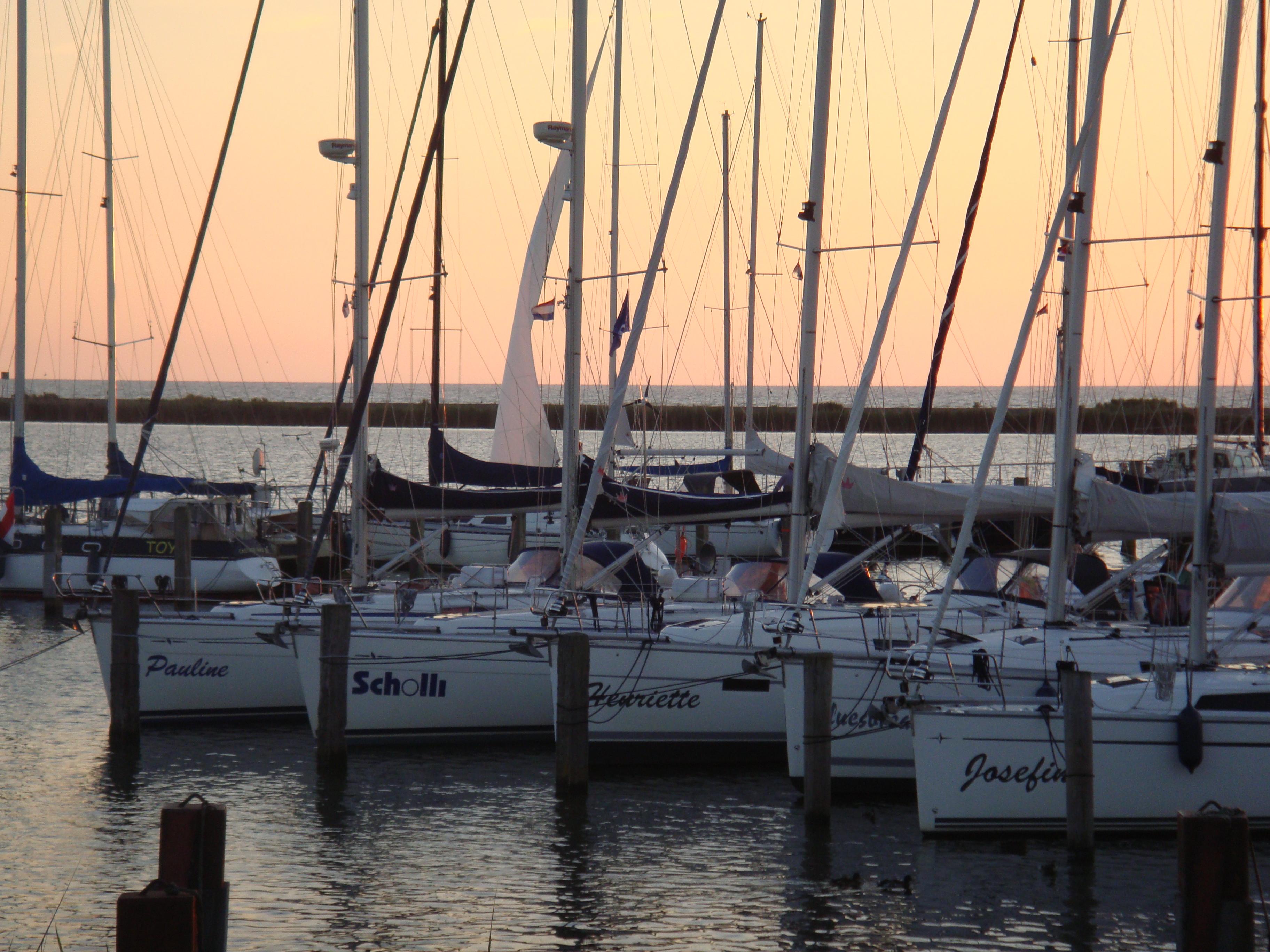 Die Mittler Flotte